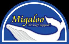 Migaloo日記